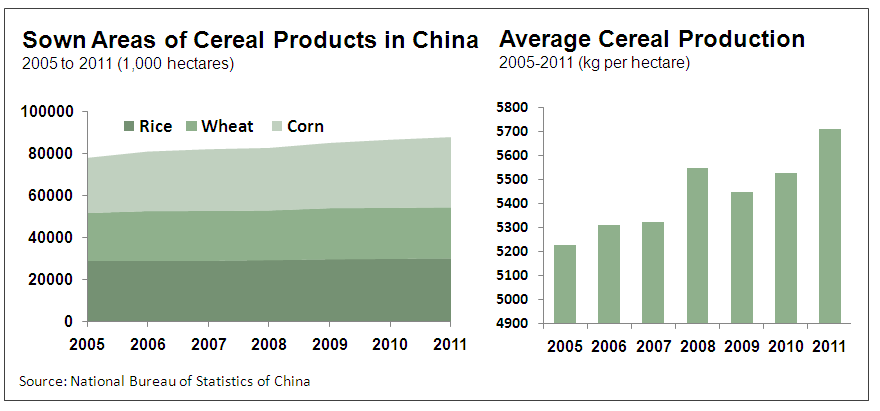 Food Security Problem in China